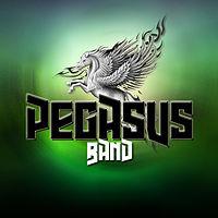 Pegasus band - Some one like you (Reggae).mp3