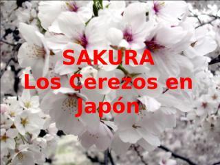 Japón - Sakura.pps