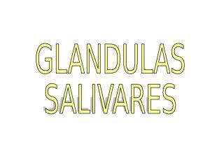 Glandulas Salivales.ppt