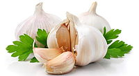 garlic-herbal-recipe-for-toothache