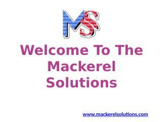 Web Development Services , Digital Marketing Company.pptx