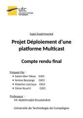 Rapport_final.doc